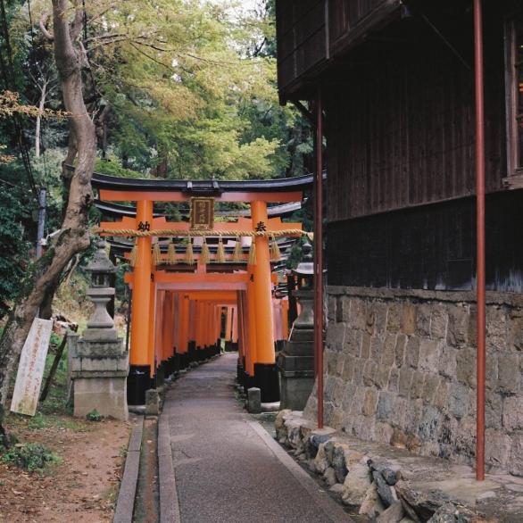 http://awel.fr/files/gimgs/th-56_Awel-Japon-2-2013-000011.jpg